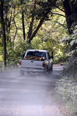 Pickup truck on Dutch Creek Road